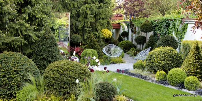 39 39 gardenarium 39 39 s c danuta m o niak i witold m o niak komor w firma godna zaufania. Black Bedroom Furniture Sets. Home Design Ideas
